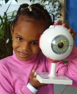 A child holds up a model eye.