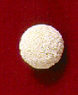 The hydroxy-apatite (coral like) implant looks a little like a golf ball.