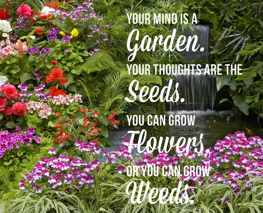 """Quote laid over an image of a flower garden that is a riot of vibrant booms (mostly red, purple, pink and white) and verdant greenery around a tiered waterfall. Quote: """"Your mind is a garden, your thoughts are the seeds. You can grow flowers, or you can grow weeds."""""""
