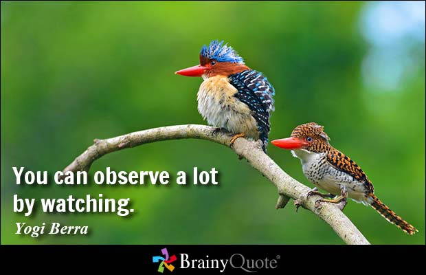 """Yogi Berra quote set to the bottom left of an image depicting two birds sitting on a single branch, in sharp focus against the blurred forest and blue sky background. Quote: """"You can observe a lot by watching."""""""