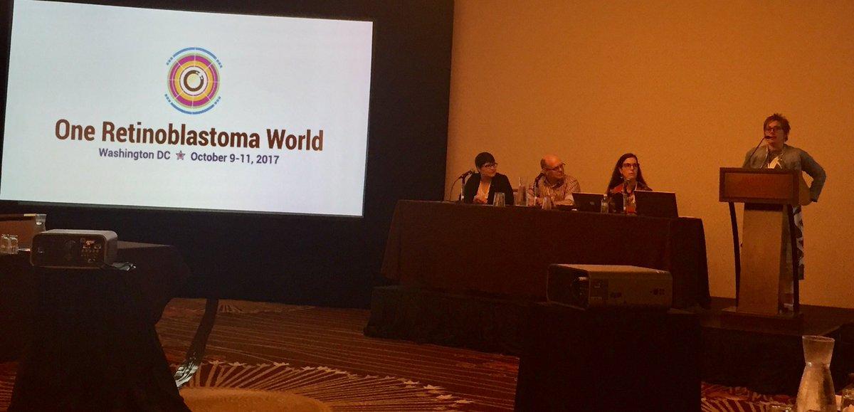 Sandra Staffieri introduces the Awareness Panel