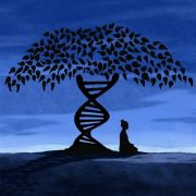 Tree of Life - thr trunk of the tree is a DNA double helix
