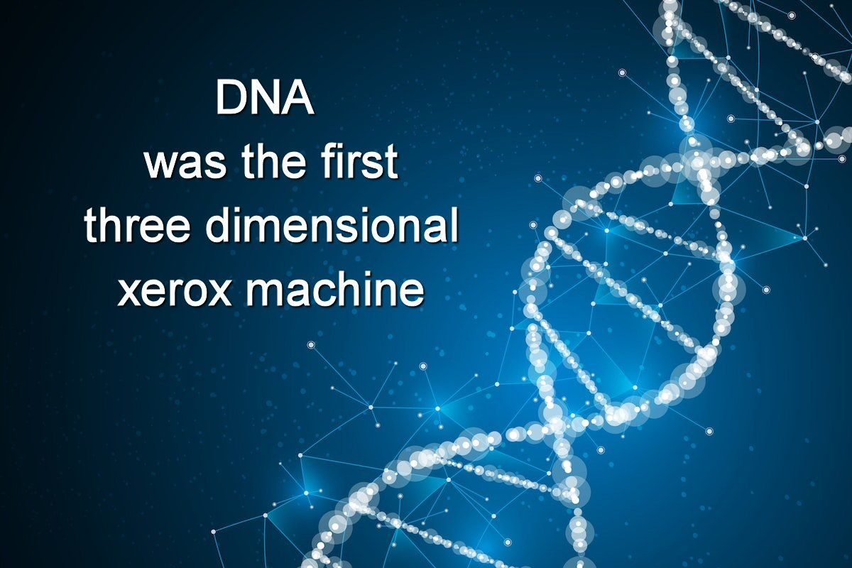 DNA was the first three-dimensional xerox machine