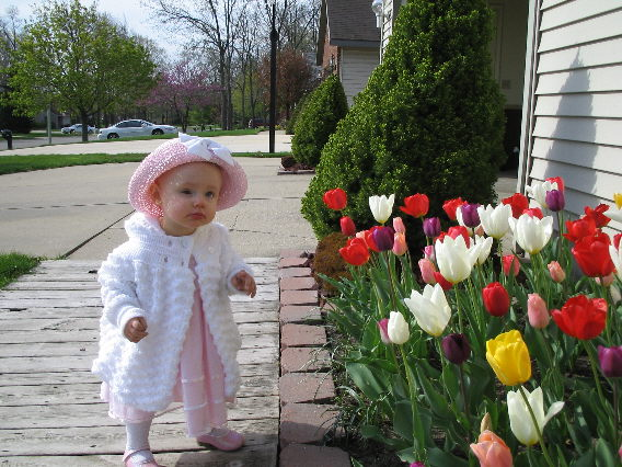 An inquisitive young girl dressed in pink and white leans towards a bed of pink, red and white tulips that surround a single bright yellow tulip.