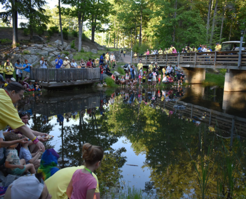 Distant view of families and volunteers gathered on a wooden bridge over a serene pond, and around its margins. All the vibrant colours of the people, forest, blue sky and impending golden sunset are reflected in the wishpond's still waters.