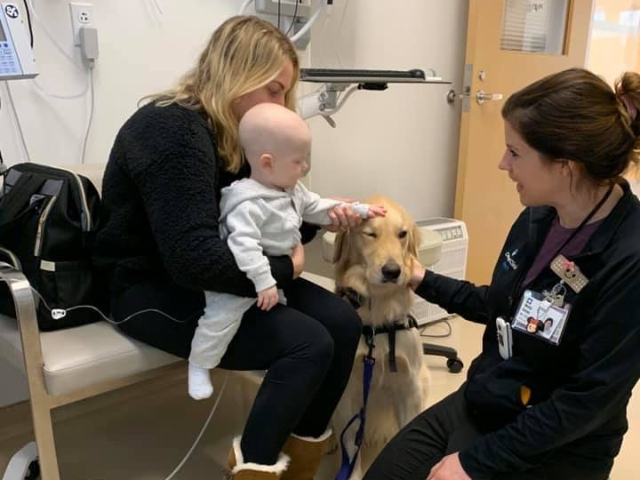 A young girl receiving chemotherapy sits on her mother's knee while petting a therapy dog who sits quietly alongside the child life specialist.