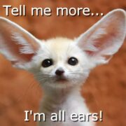 """A fennec fox with a small round white face, dark round eyes and nose and very large ears is framed against the orange-brown desert of North Africa. Text above and below the picture reads """"Tell me more… I'm all ears."""""""