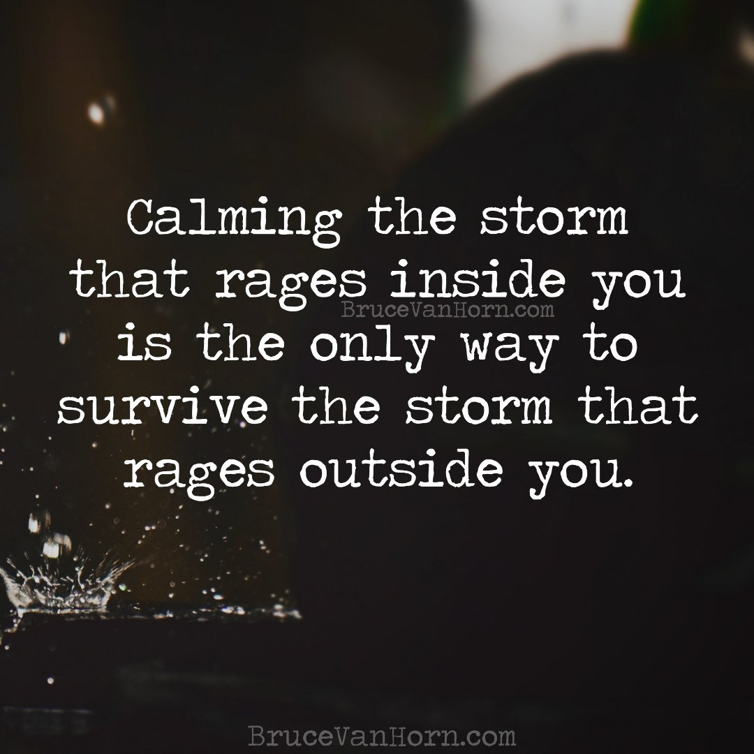 "Against a backdrop of a stormy grey sky, text reads: ""Calming the storm that rages inside you is the only way to survive the storm that rages outside you"" – Bruce van Horn."