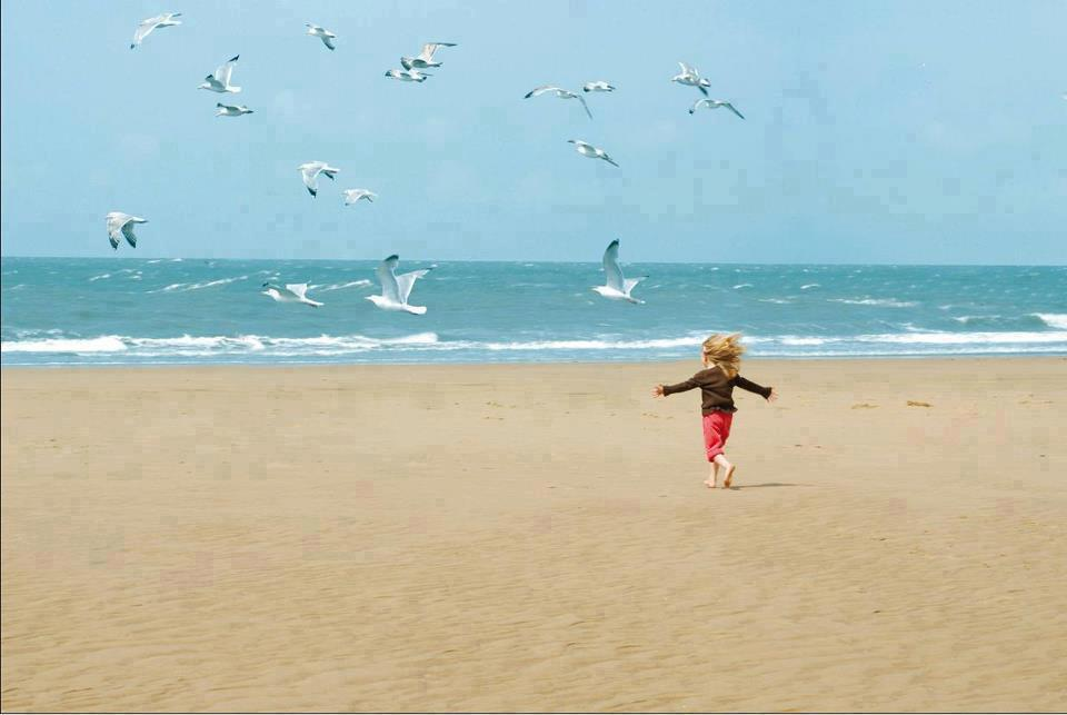 A young girl runs along a wide, empty beach towards the sea. Her arms are outstretched and her hair blows in the wind, like the wings of the seabirds that surround her in flight. She is facing away from the camera.
