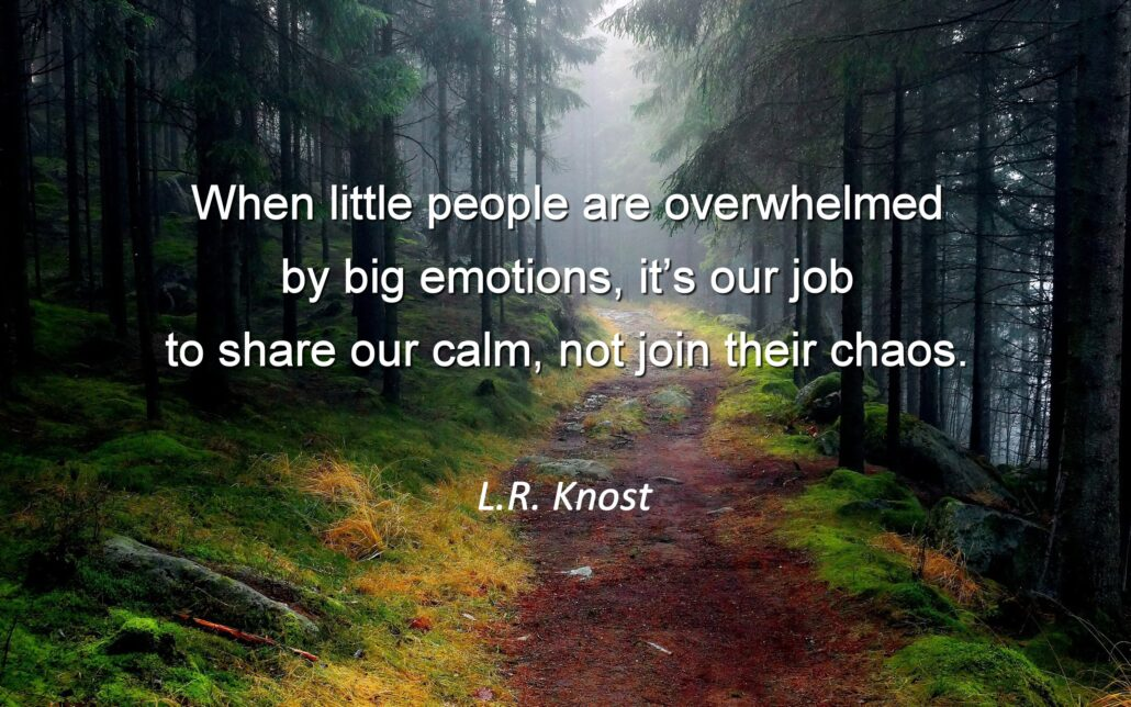 """A forest with tall evergreen trees growing on a mountain path and fog settling behind. Text reads """"'When little people are overwhelmed by big emotions, it's our job to share our calm, not join their chaos' L.R. Knost""""."""