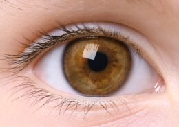 Close-up of a brown eye.